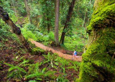 person running on trail through forest