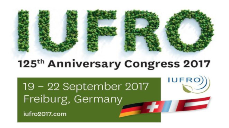 Belcher presents preliminary research effectiveness case study research at IUFRO congress
